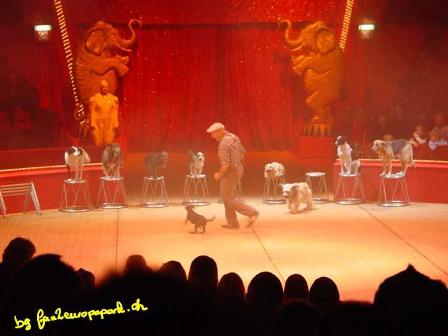 Wolfgang Lauenburger et ses chiens