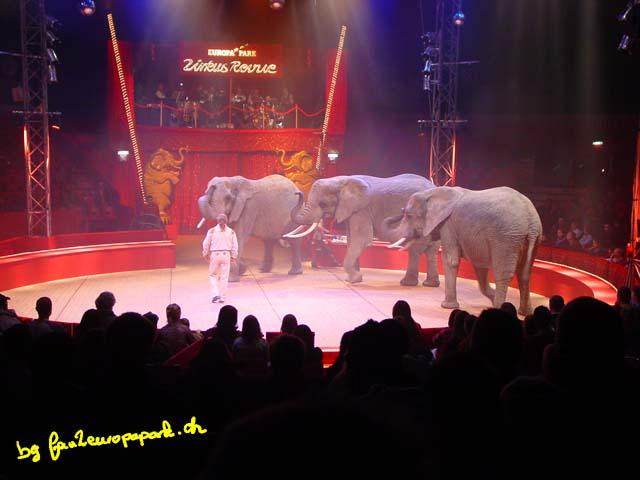 Sonny Frankello et ses éléphants d'afrique
