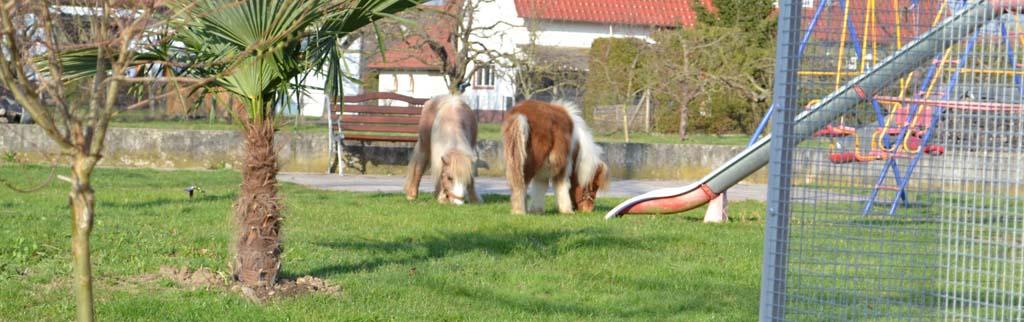 Werneths Landgasthof Hirschen